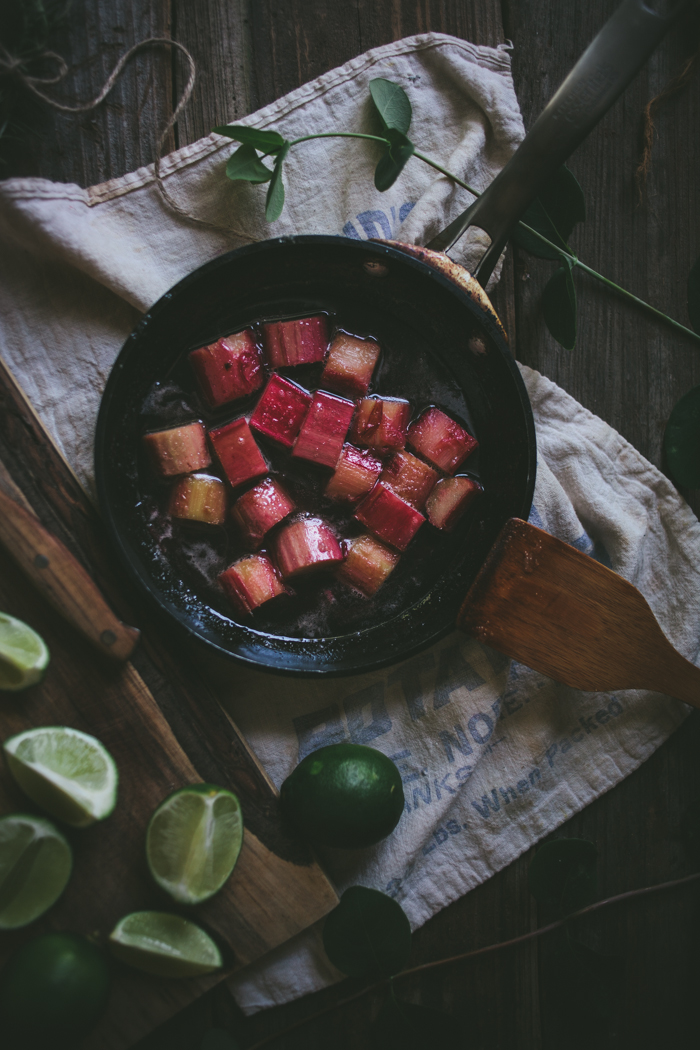 Rhubarb Margarita | Adventures in Cooking