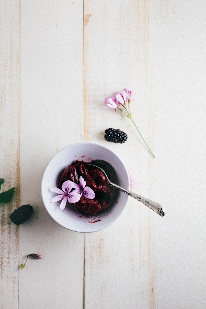 Blackberry Cabernet Sorbet | A Guest Post From Hummingbird High