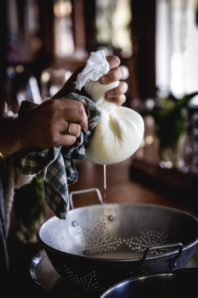 Cape Cod Photography & Cheesemaking Workshop