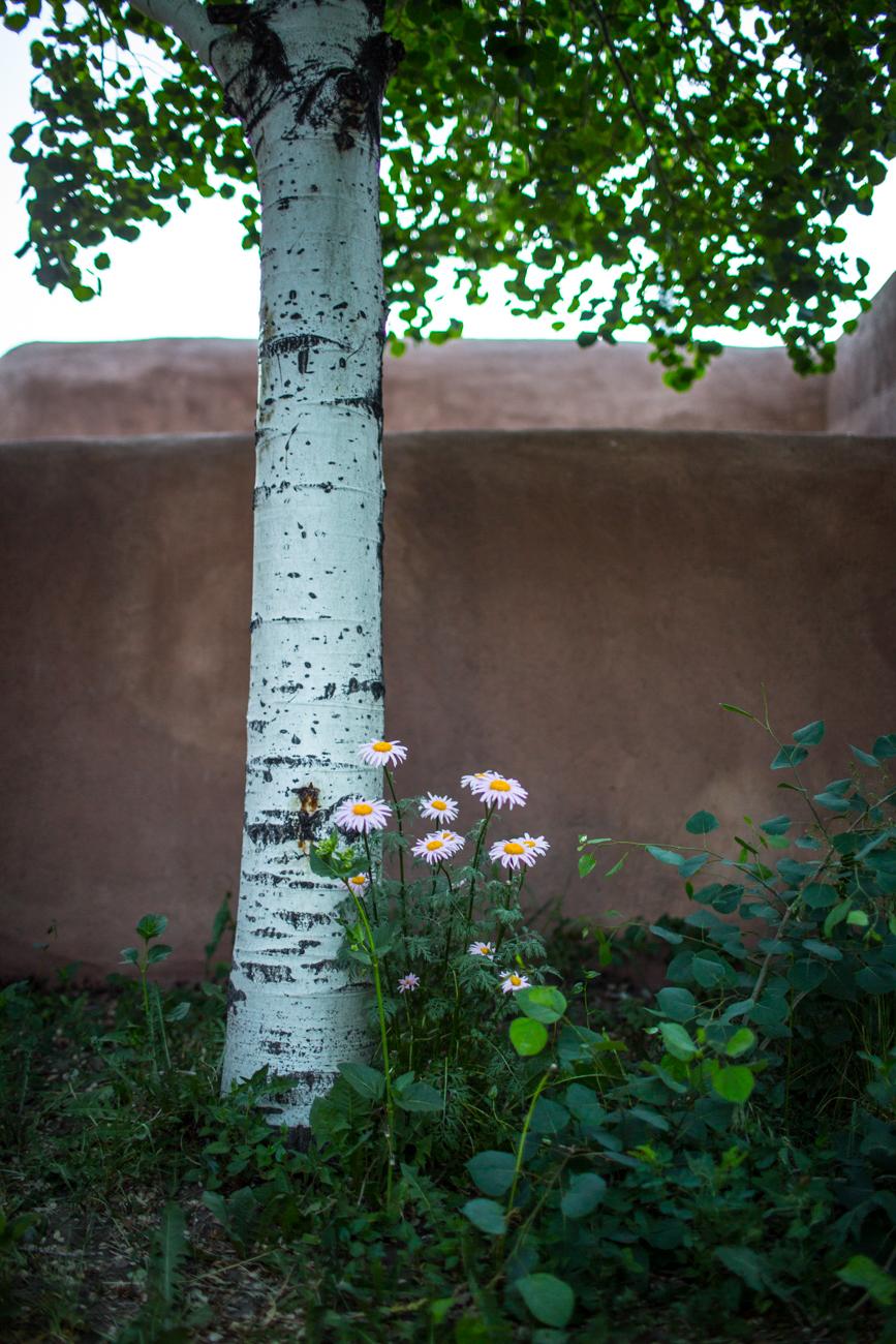 New Mexico Photography Workshop by Eva Kosmas Flores-16