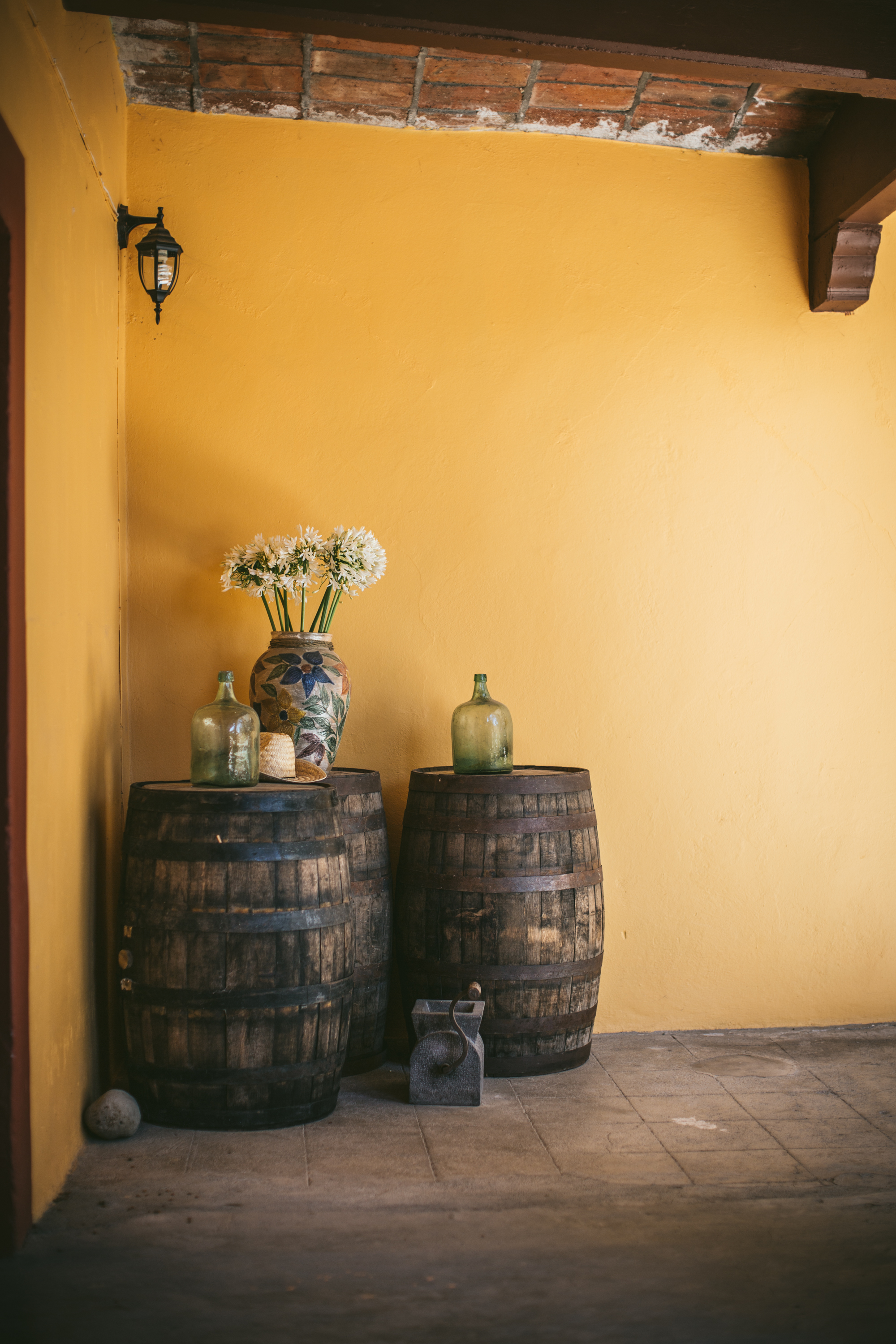 Oaxaca | Mexico Travel Guide | Adventures in Cooking