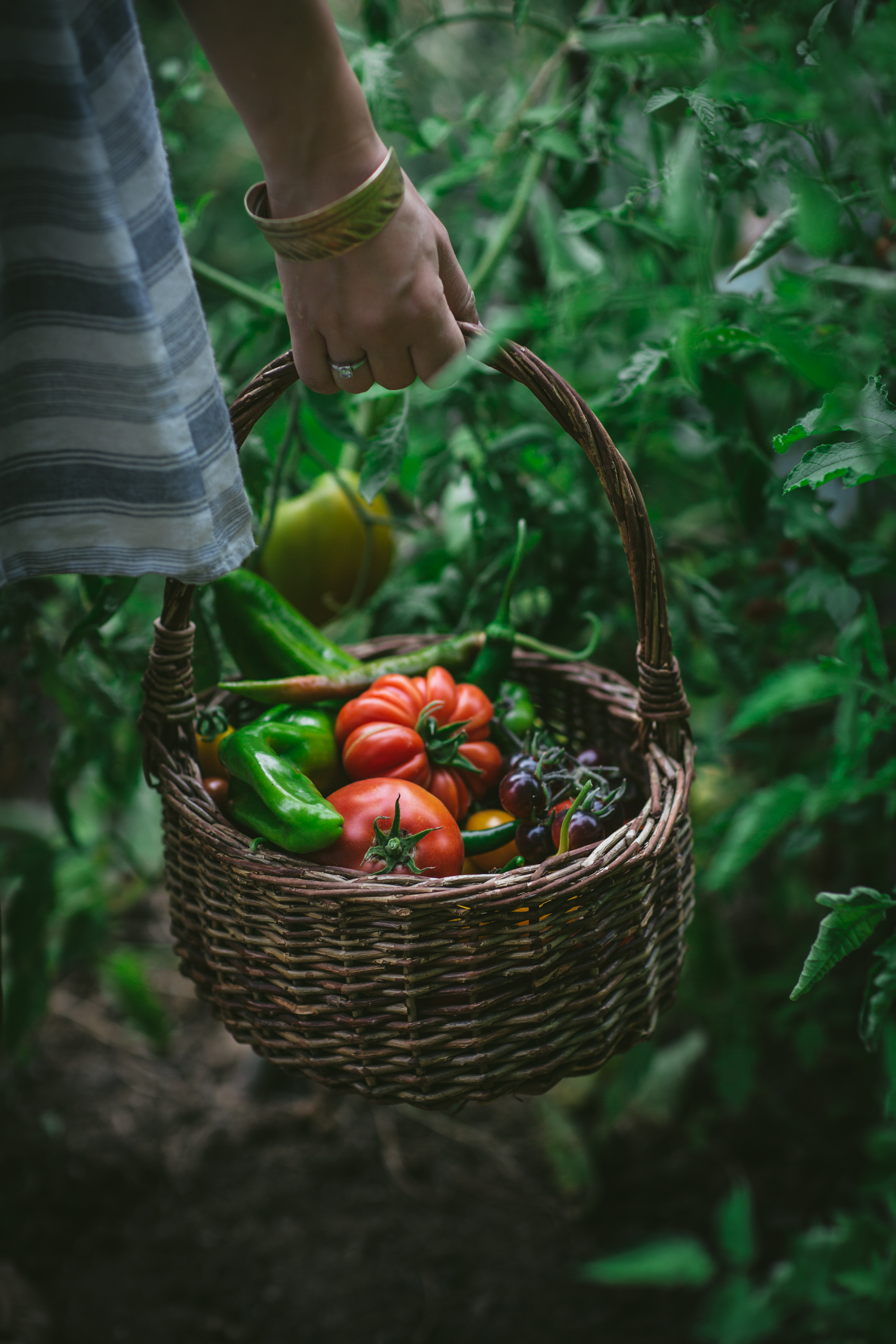 Summer Garden by Eva Kosmas Flores of Adventures in Cooking