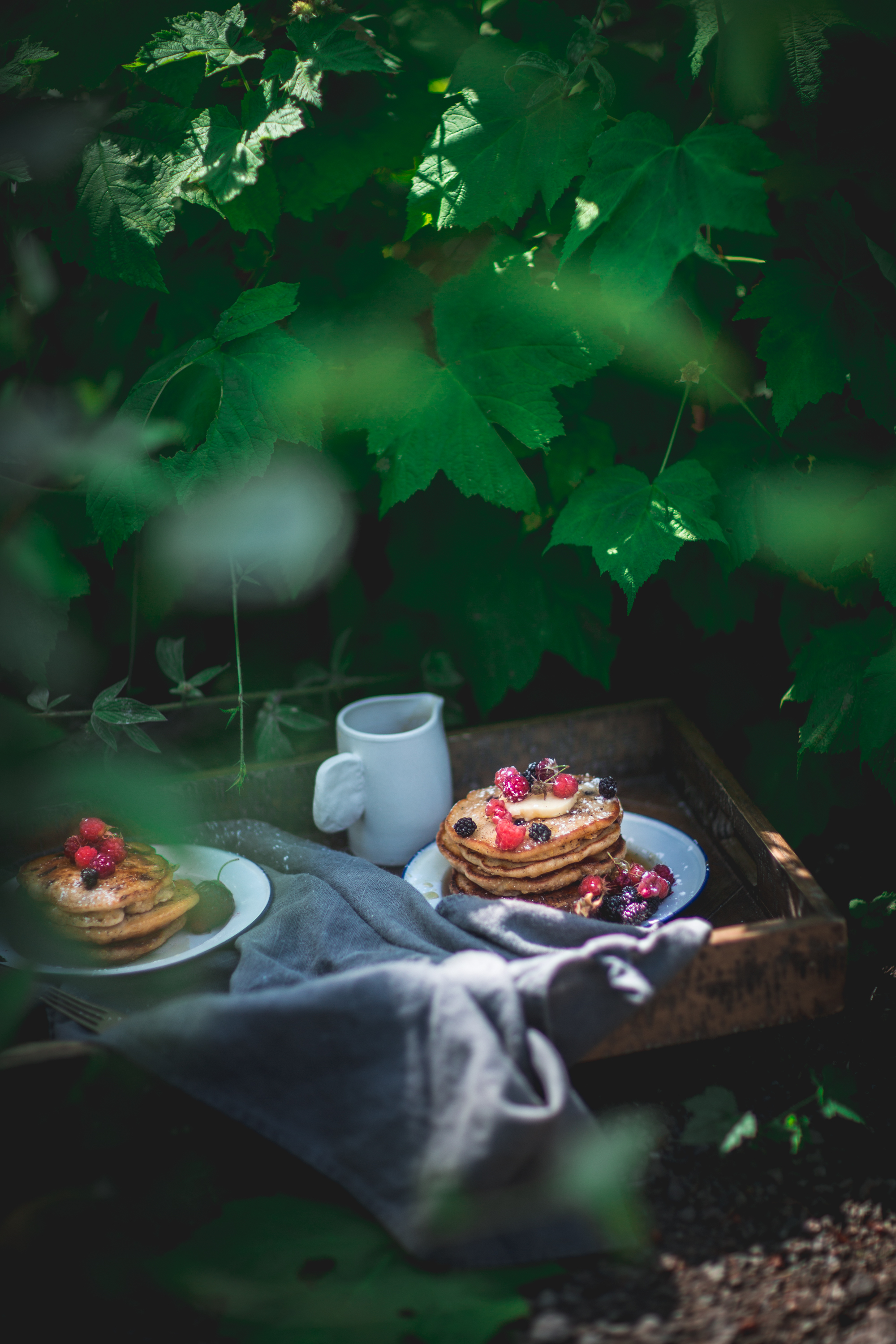 blackberry, cornbread, summer, camping, guide, pancakes, breakfast, cast, iron, cooking, columbia, river, gorge, homestead, pacific, northwest