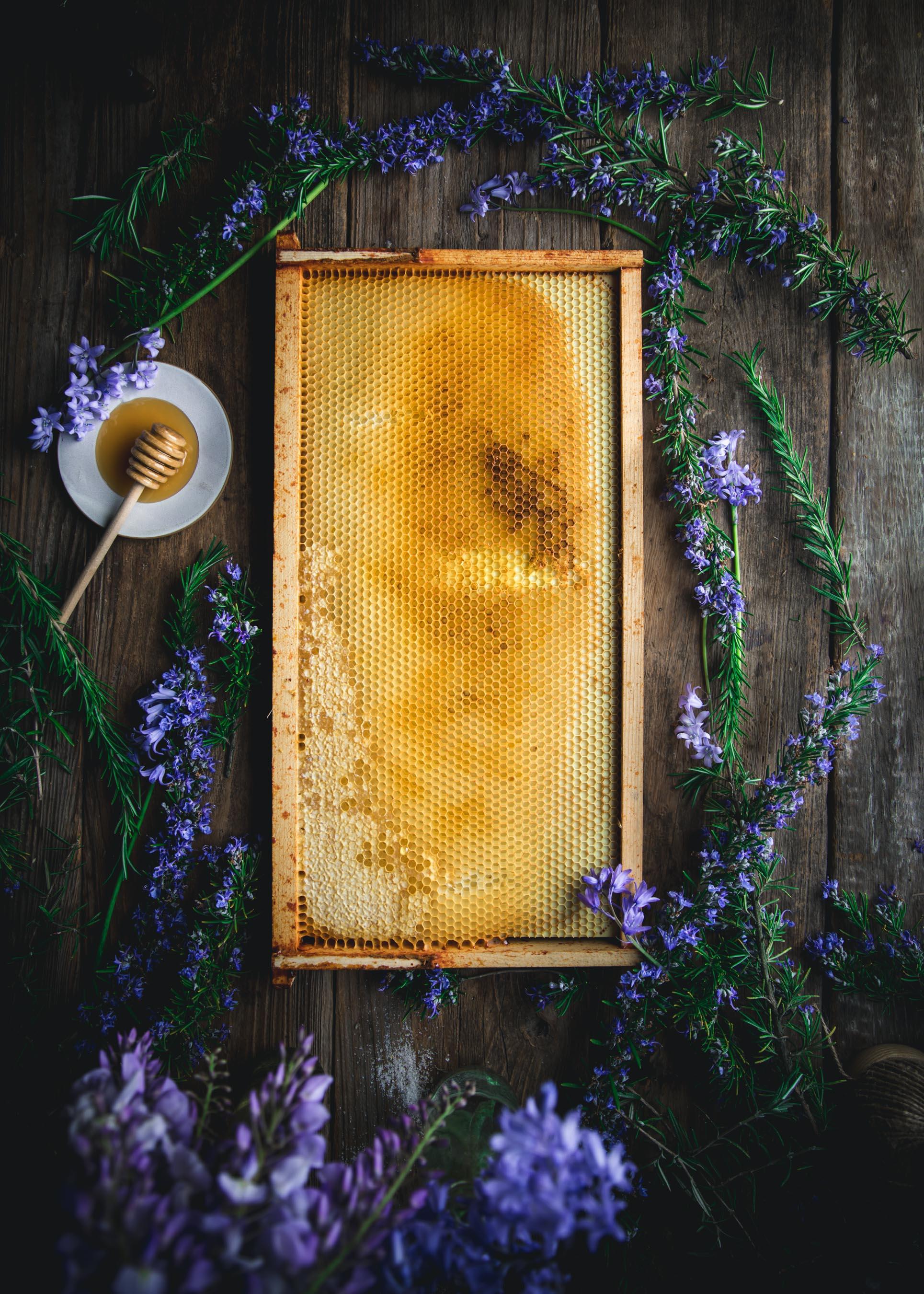 Honey Bee Frame